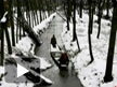 Heavy snow-fall cripples life in Valley