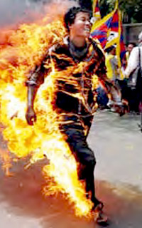 a discussion on the issue of self immolations in tibet Immolations in tibet: the shame of the world  the topic is highly sensitive and the chinese have made a huge effort to suppress discussion of it  she says people who commit self-immolation .